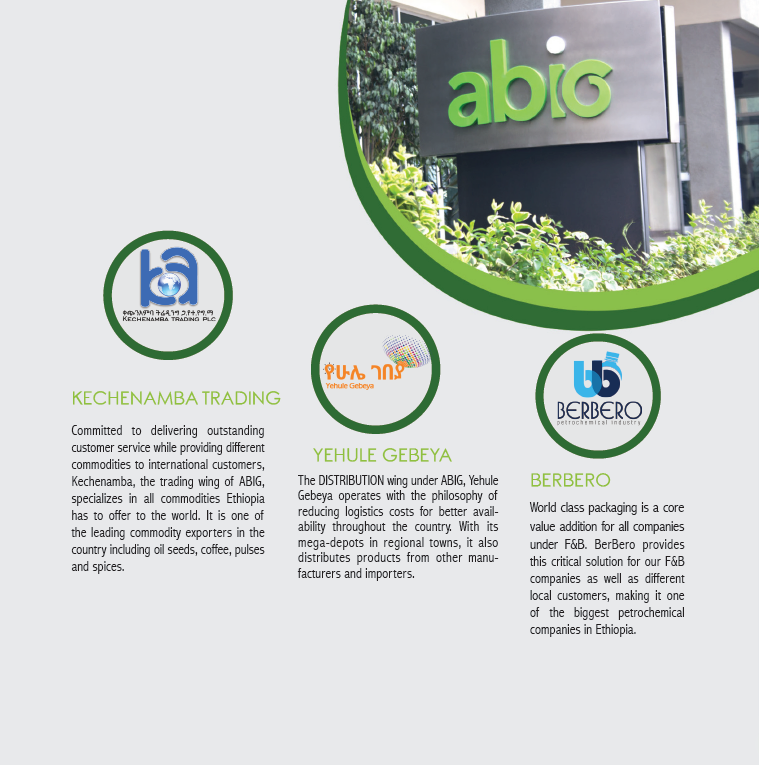 ABOUT US – abig
